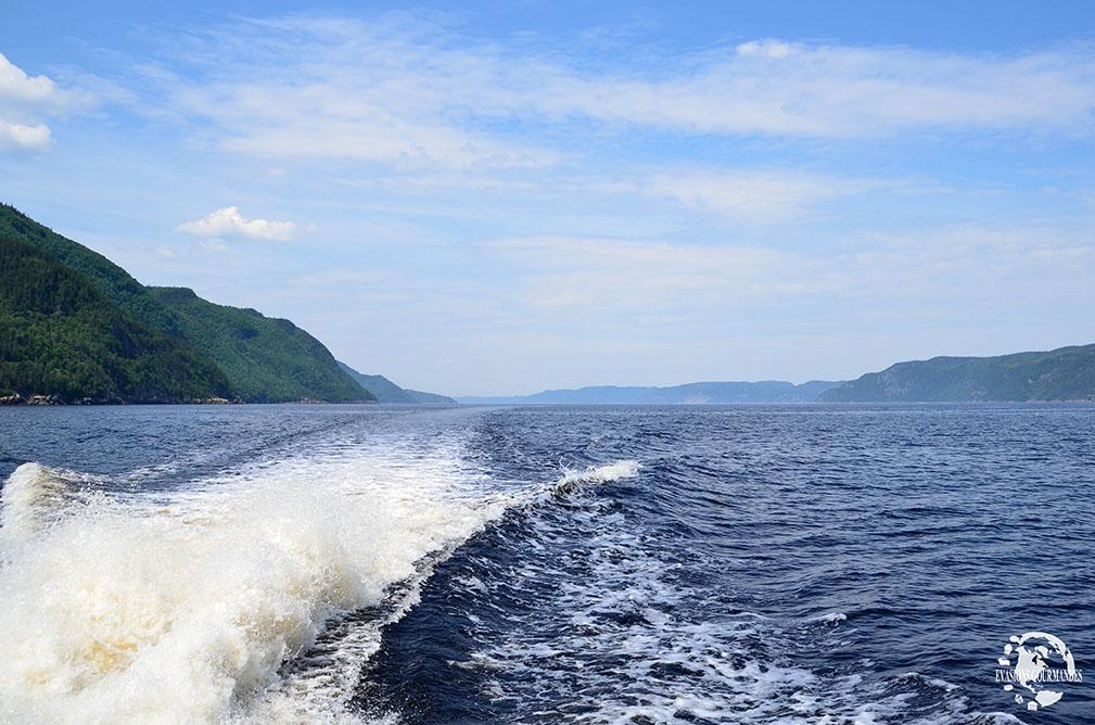 croisière Fjord du Saguenay