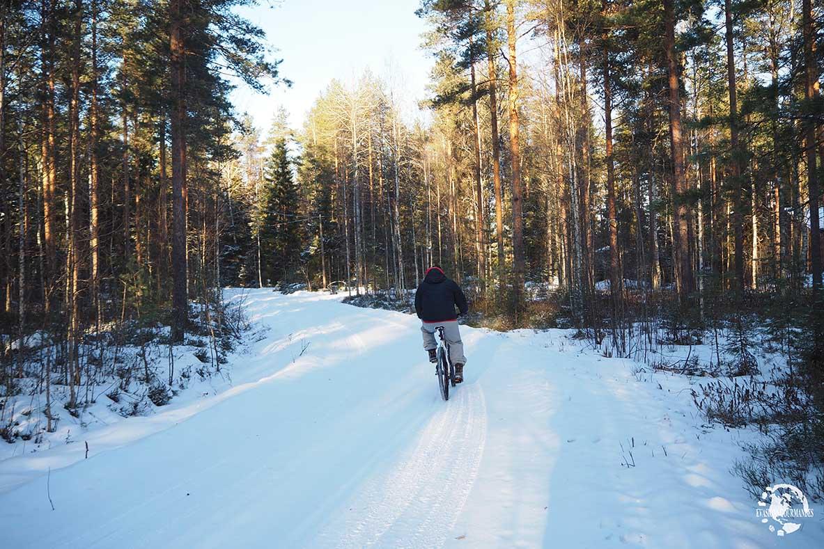 hiver en Laponie