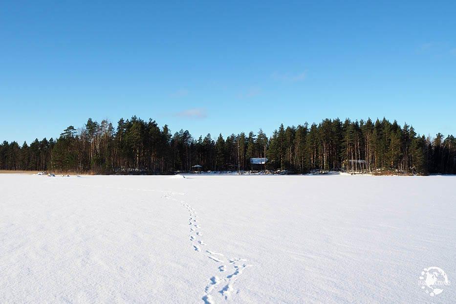 paysage Finlande hiver