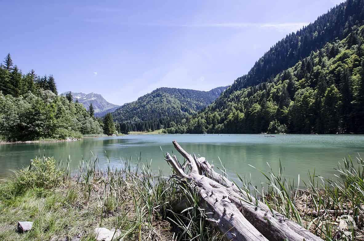 Lac de Vallon