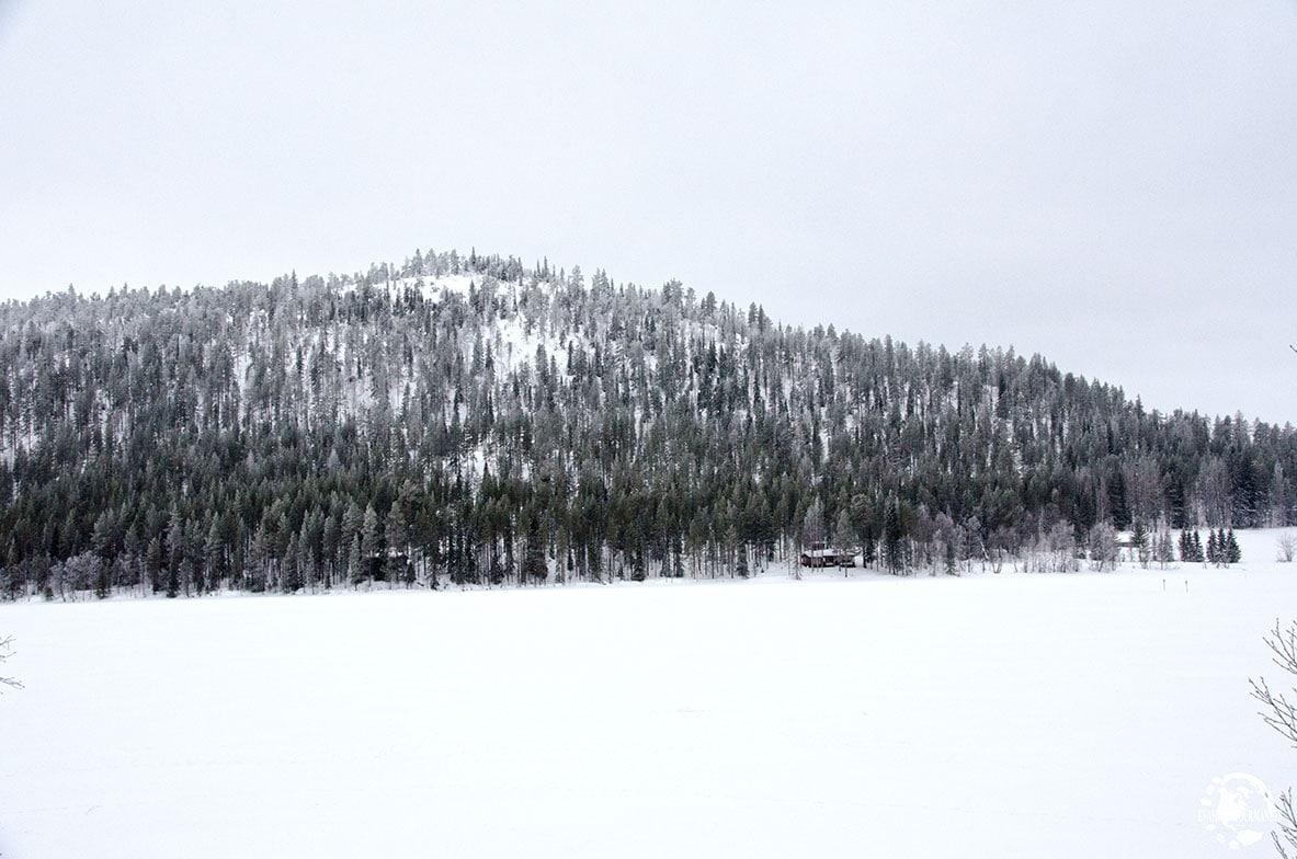 Finlande en hiver