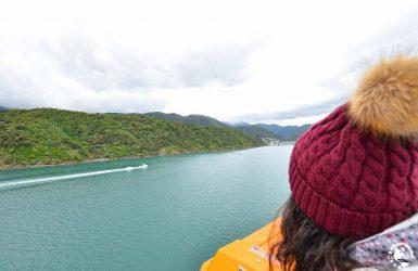 ferry Wellington
