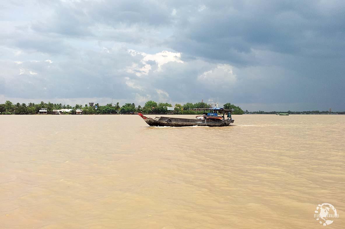 Delta du Mékong
