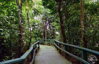 chutes d'Iguazu : quel côté choisir ?